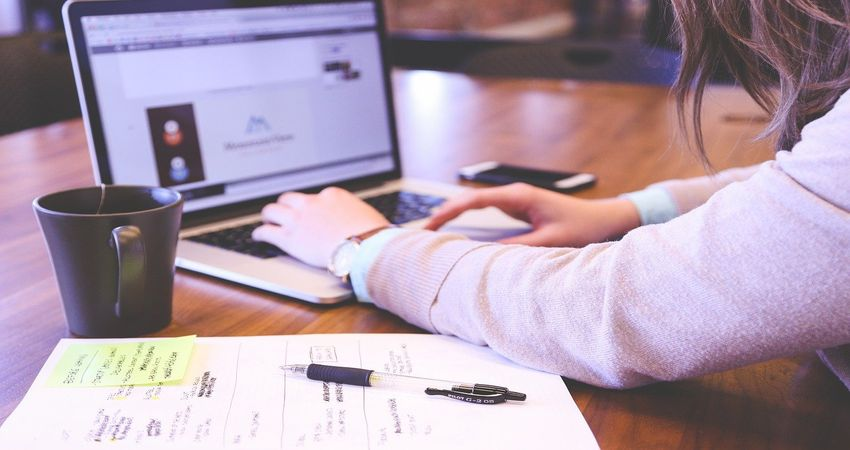 Best Sample Resumes For Freshers Who Want to Grow in Their Career
